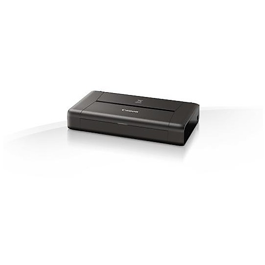 ip 110 + batteria